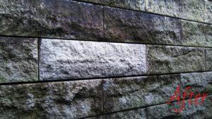 カビ・藻汚れのサイディング外壁安心安全な環境対応型特殊洗浄G-Eco工法テスト施工後