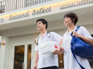 動物病院 セカンドセレクト